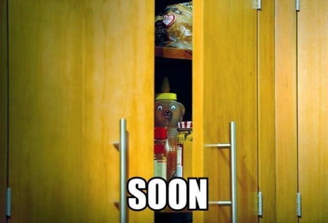 Soon Meme (Honey Bear)